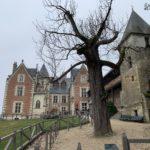Visiting Leonardo Da Vinci's last residence—the Châteaux du Clos Lucé in Amboise, France