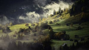 a hillside with scattered tress and hovering mist with dramatic light and dark shadows