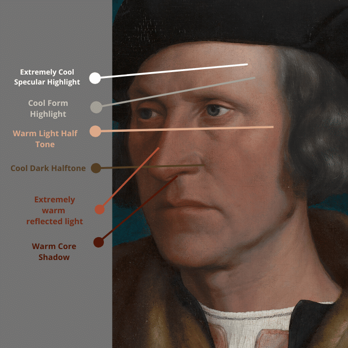 skin tones and color temperature diagram of a portrait by Hans Holbein