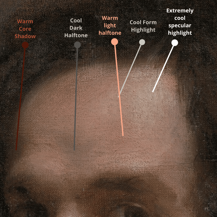 color temperature diagram of a velazquez portrait