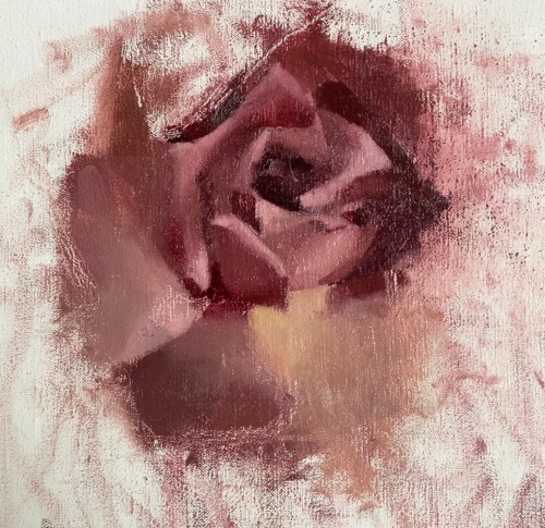 different rose painting shades