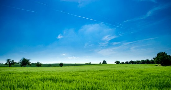 Green field with expansive blue skies