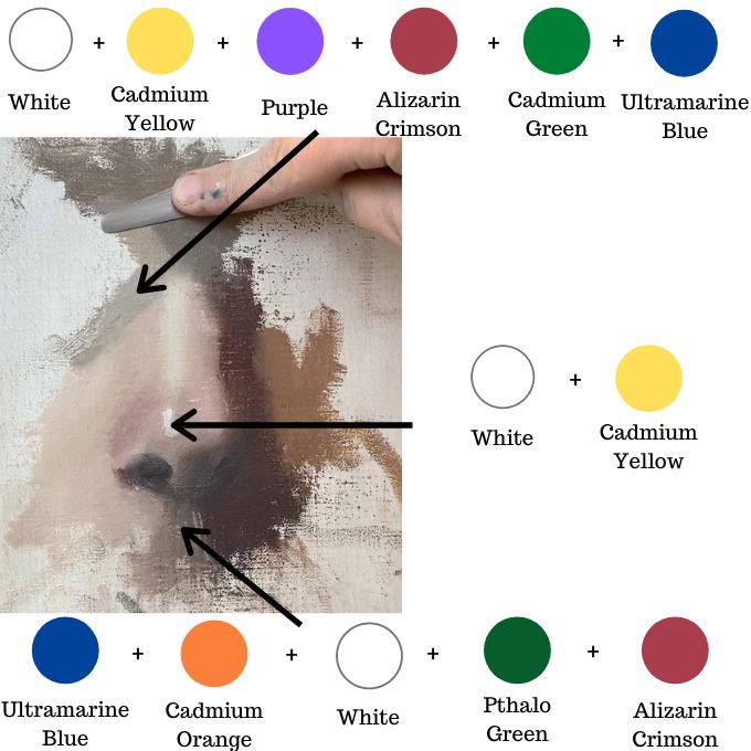 nose skin tones color mixing diagram