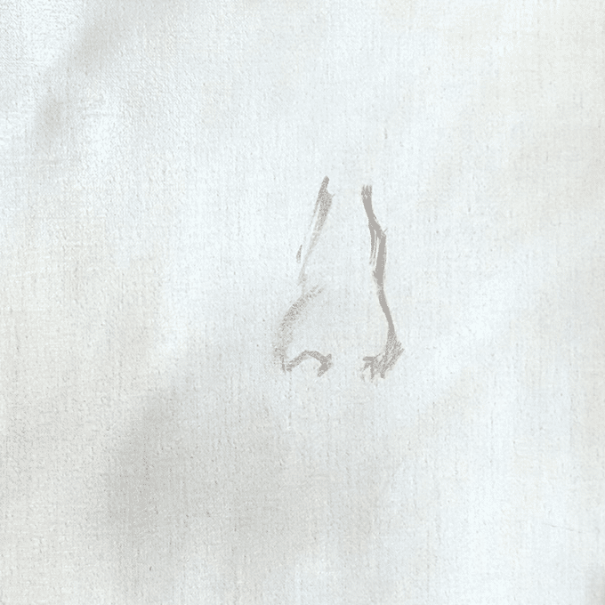 painting sketch outline of a nose