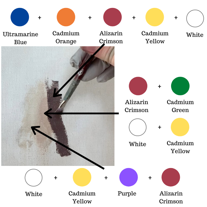 color mixing chart diagram showing how to mix skin tone colors