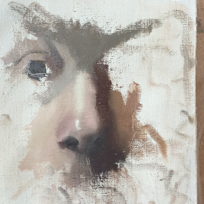 three quarter of a painting of a nose