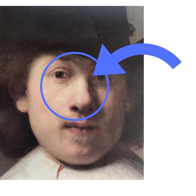 diagram focusing on the nose of Rembrandt portrait